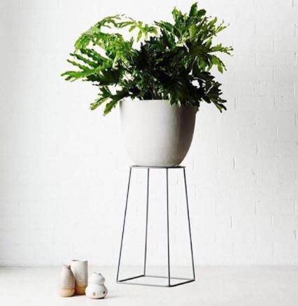 minimalist plant stand